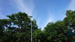 午前7時 中央公園の木々と空