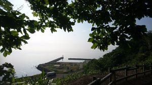 午前7時 つくしから見る鱒浦漁港