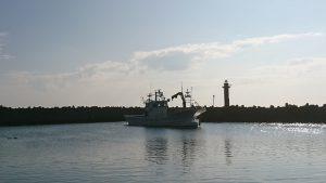 午前7時 鱒浦漁港