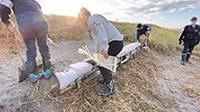 テントを立てるために積まれた杭や土のうなどを撤去する職員【北見・網走のフリーペーパー・経済の伝書鳩 ニュース】