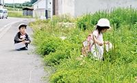 何やら草むらへ…寄り道は散歩の定番です→
