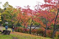 野付牛公園(北見)
