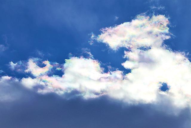 作品名『彩雲』北見市・男性 1月29日午前、仕事中に空を見上げると雲に映る虹のような彩りを見つけました。何枚か写真を撮っているわずかな時間で消えてしまいました。幸運の兆しだといいですね。