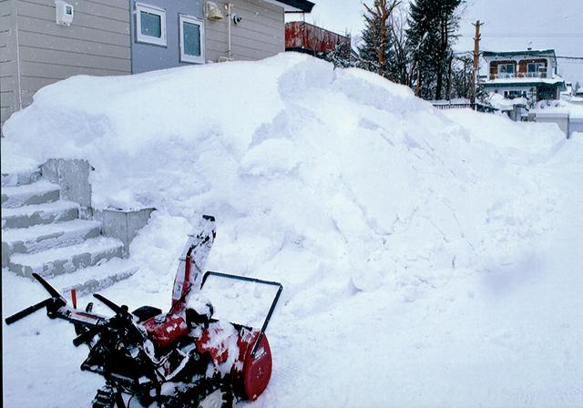 作品名『表層雪崩を撮りました』Keiko 先日の大雪のあと、早起きして雪かきに明け暮れました。あっという間に自分の身長を超える高さになりましたが、残雪の上に新雪を積み上げていったため、表層雪崩が起きてしまいました。せっかくきれいにした道路も台無しです(泣)。くやしいので記念写真?を撮りました。これからの時期、歩道脇の雪山が突然崩れたりすることがあるかもしれません。登下校する子ども達には、十分気をつけてほしいと思っています。
