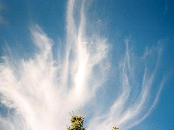 作品名『変わった雲』網走市・雲好き 先日のお昼ごろ、空を見上げると変わった雲に気が付いて撮影しました。まるで下から煙が上がってきているように見えます。いろいろ写した中でも好きな雲の1枚です。