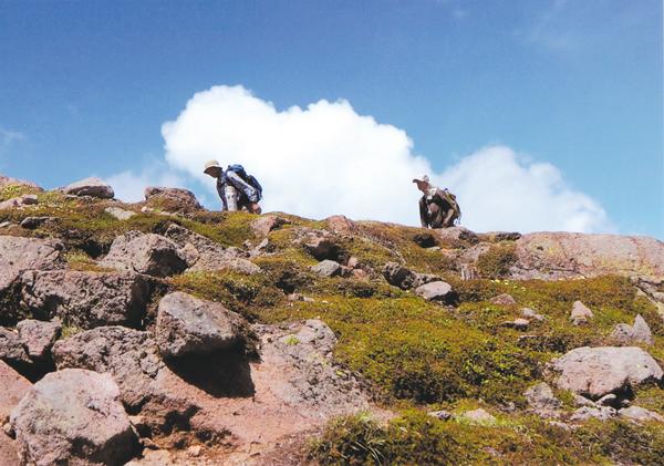 作品名『山に登る人』美幌町・男性 7月に花の撮影のために訪れた北鎮岳の頂上付近。夏空を背に受け、北鎮岳の稜線をいく人達の姿が目に入りました。
