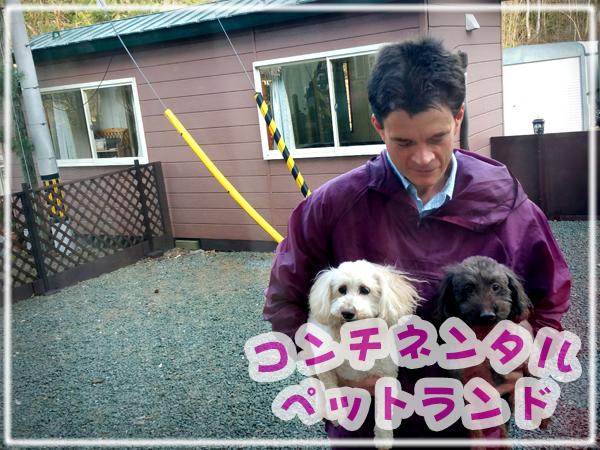 【北見市にあるペット専門のホテルと美容室 コンチネンタル ペットランド|トリマー|犬|猫|ゴールデンレトリバー|トイプードル|柴犬|シーズー|ミニチュアダックス|老犬|長期|美容室】